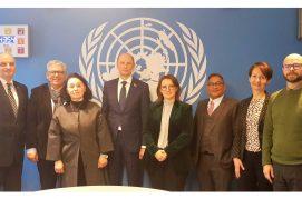 Сеть Школ мира ООН